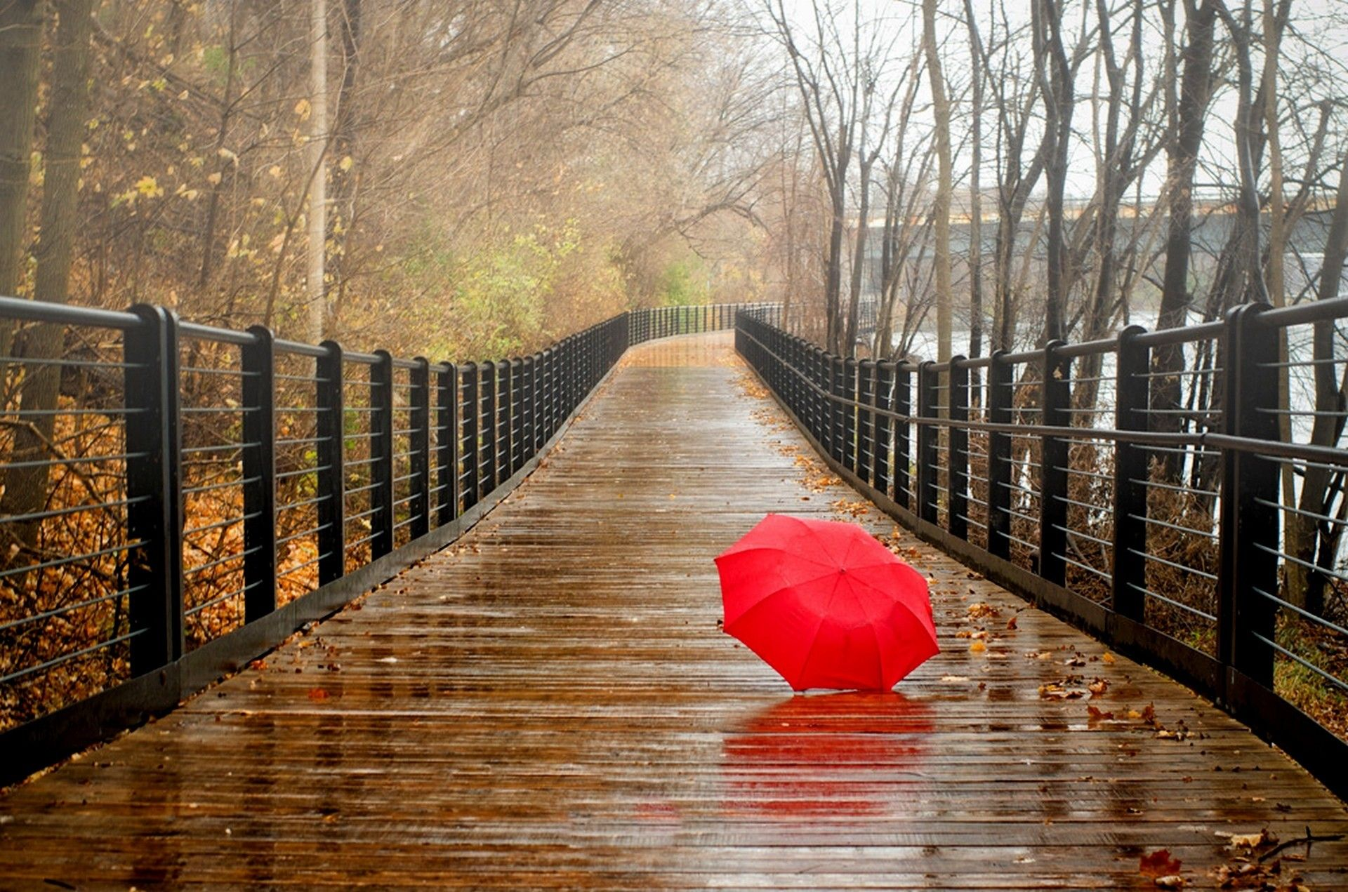 Red Umbrella On A Wet Wood Bridge Beautiful Nature Landscapes