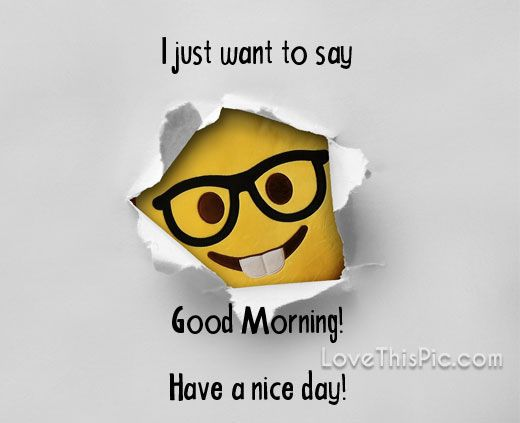 Funny Good Morning Quotes Beauteous I Just Want To Say Quotes Quote Day Morning Good Morning Good Day