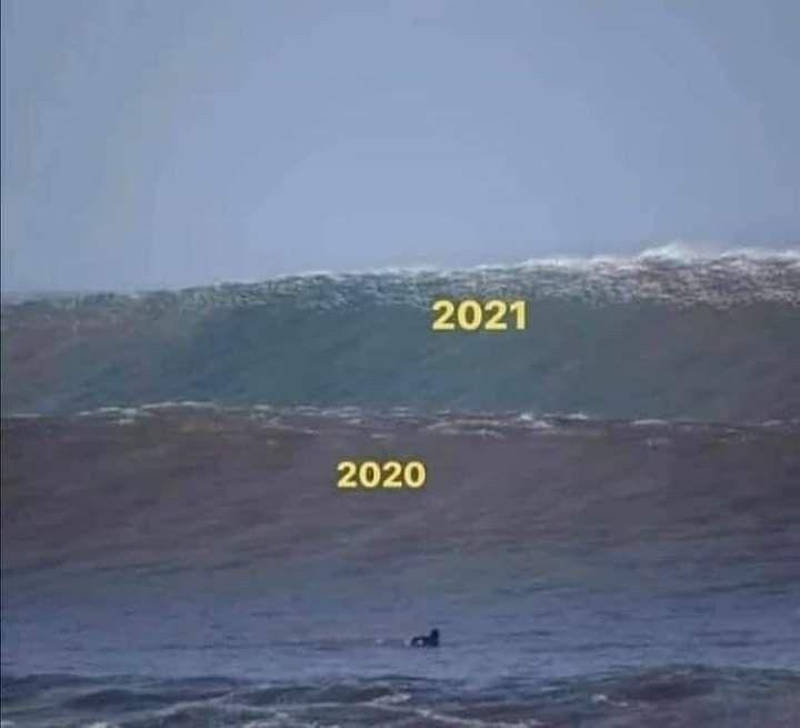 Pin de luzi anime en Memes, memes y mas memes en 2020 | Memes divertidos,  Memes nuevos, Memes