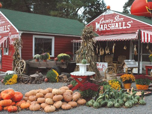 Marshalls Jersey City >> Marshalls Country Store Warren County Nj I M A Jersey
