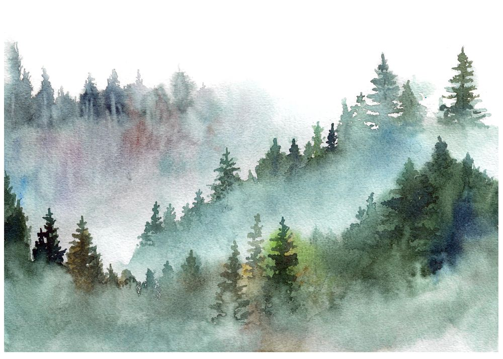 watercolor pine forest mountains in the fog art print by tjwity x small in 2020 watercolor landscape paintings watercolor flowers paintings forest painting watercolor pine forest mountains in the