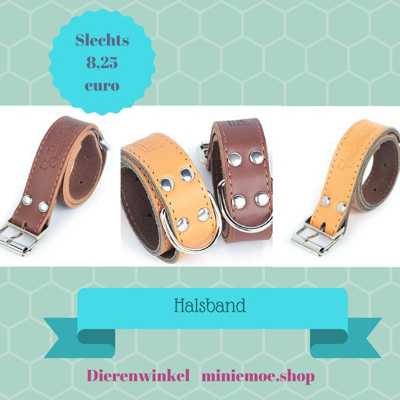 Leuke halsbanden !  https://miniemoe.shop/product/mooie-halsband-p…-goede-kwaliteit/