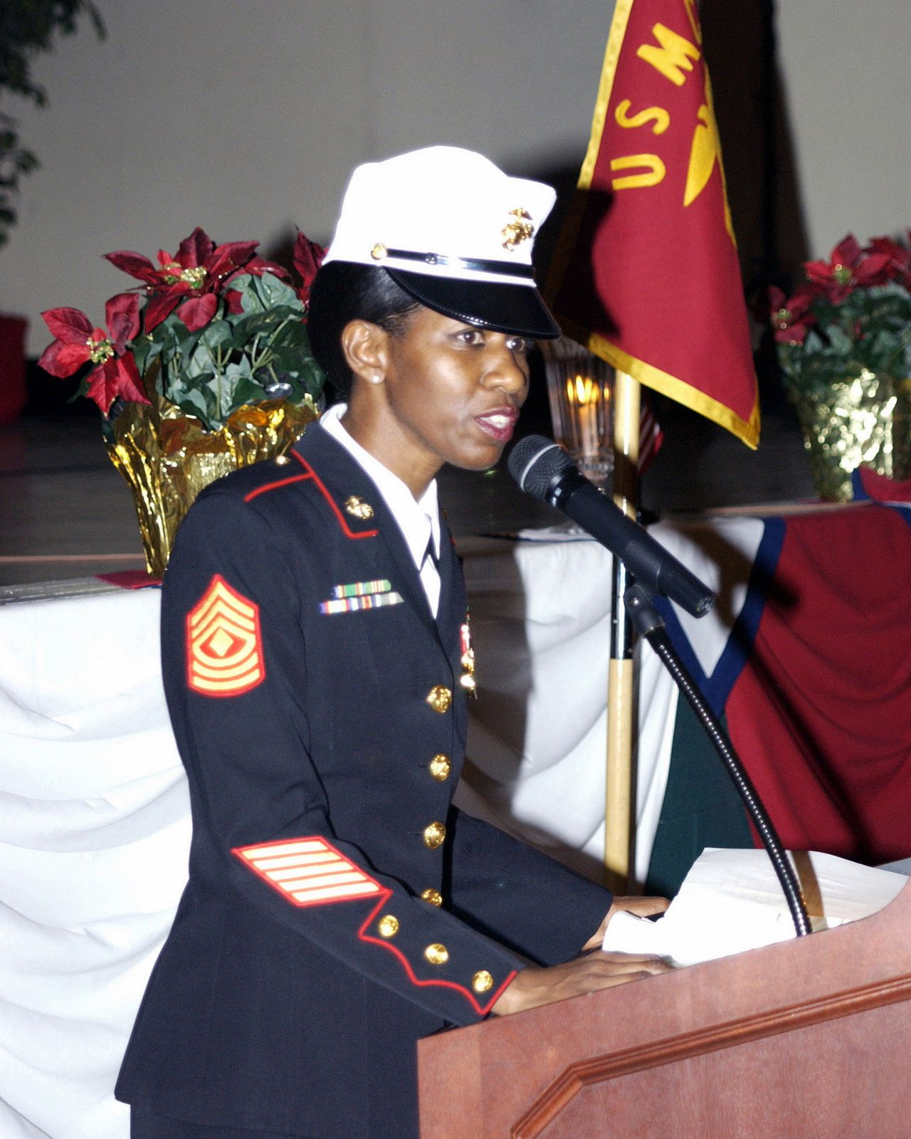 Download Image of US Marine Corps (USMC) First Sergeant