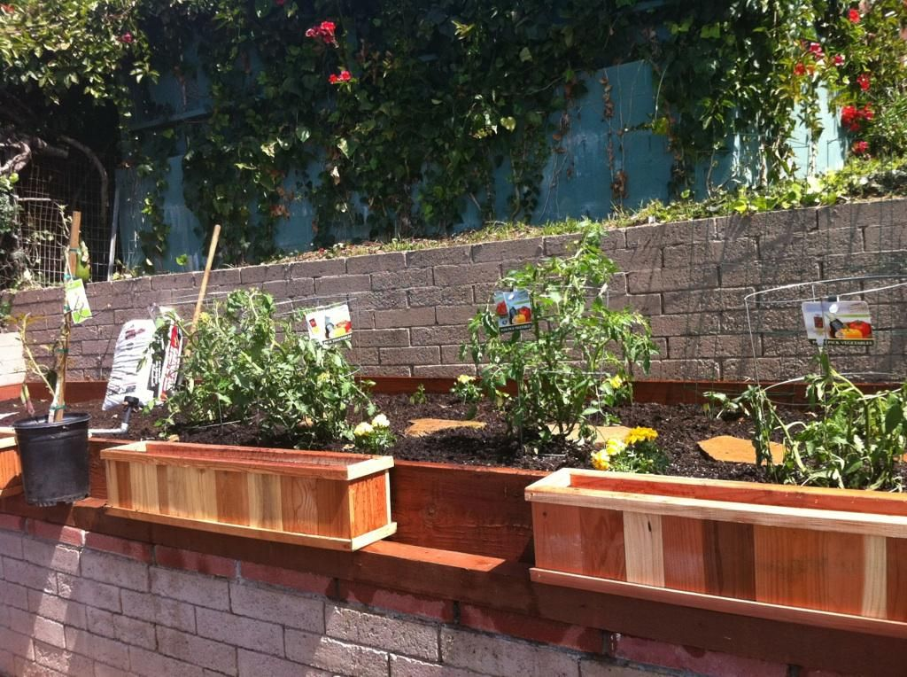 find this pin and more on raised garden beds backyard garden design ideas - Raised Bed Design Ideas