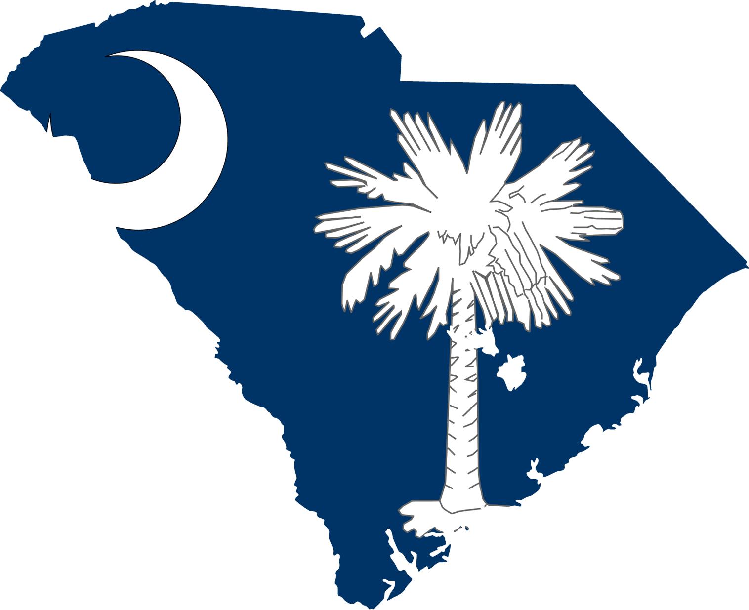 Carolina Girl South Carolina Tattoo South Carolina Flag South Carolina