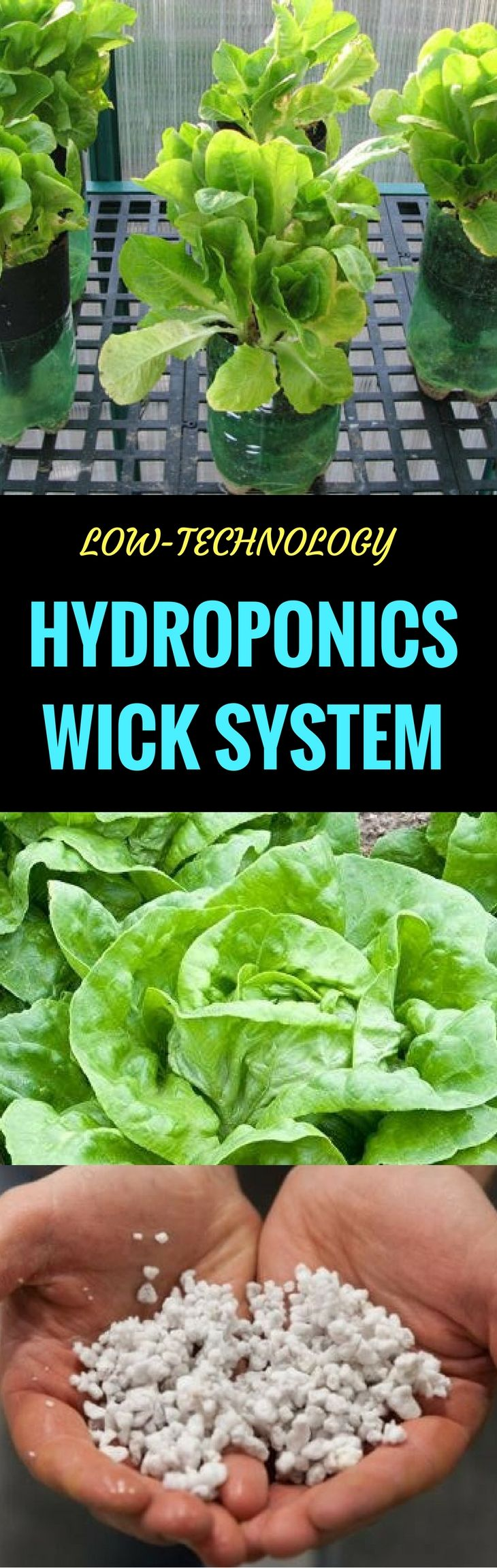 LowTechnology Hydroponics Wick System for Beginners 2018