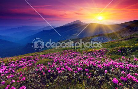 Mountain magic landscape — Foto de Stock #11008977