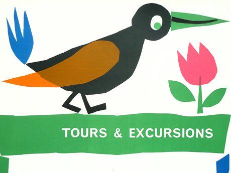 Bird Tours Poster; 1960