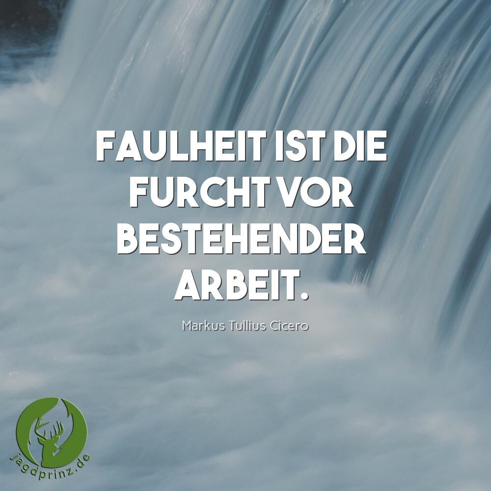 Montags Motivation vom jagdprinz.de #jagen #jagd #jagdprinz #motivation #mm