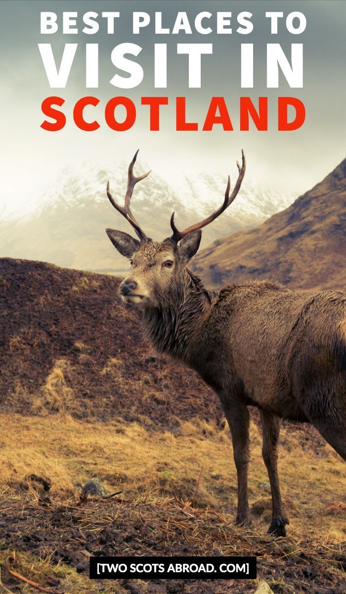 travel tip scotland Best places to visit in Scotland Scotland highlights Scotland attractions things to do in Scotland Scotland vacation Scottish highlands Scotland itine...