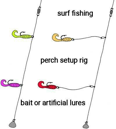 Surf Fishing Rig Perch Fishing Surf Fishing Surf Fishing Rigs