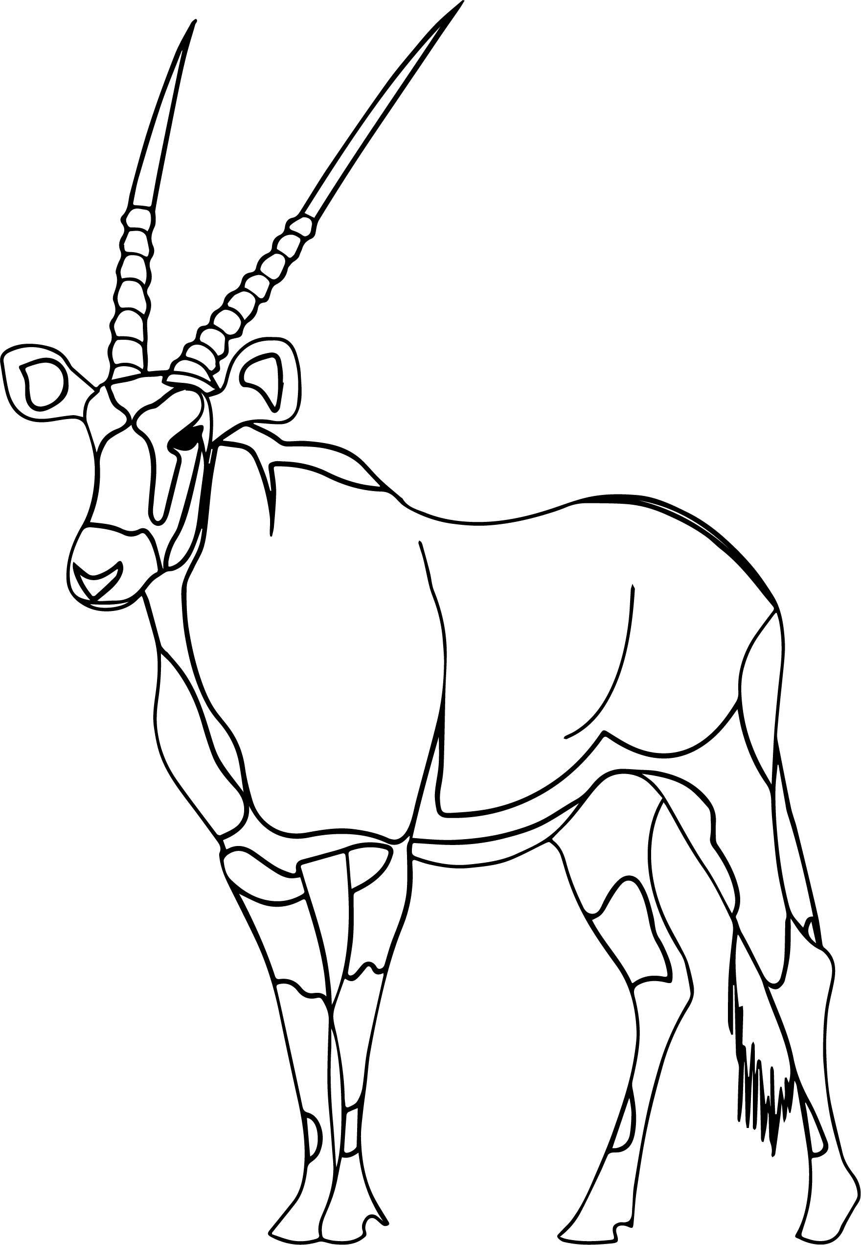 Nice Walking Antelope Coloring Page Coloring Pages Antelope
