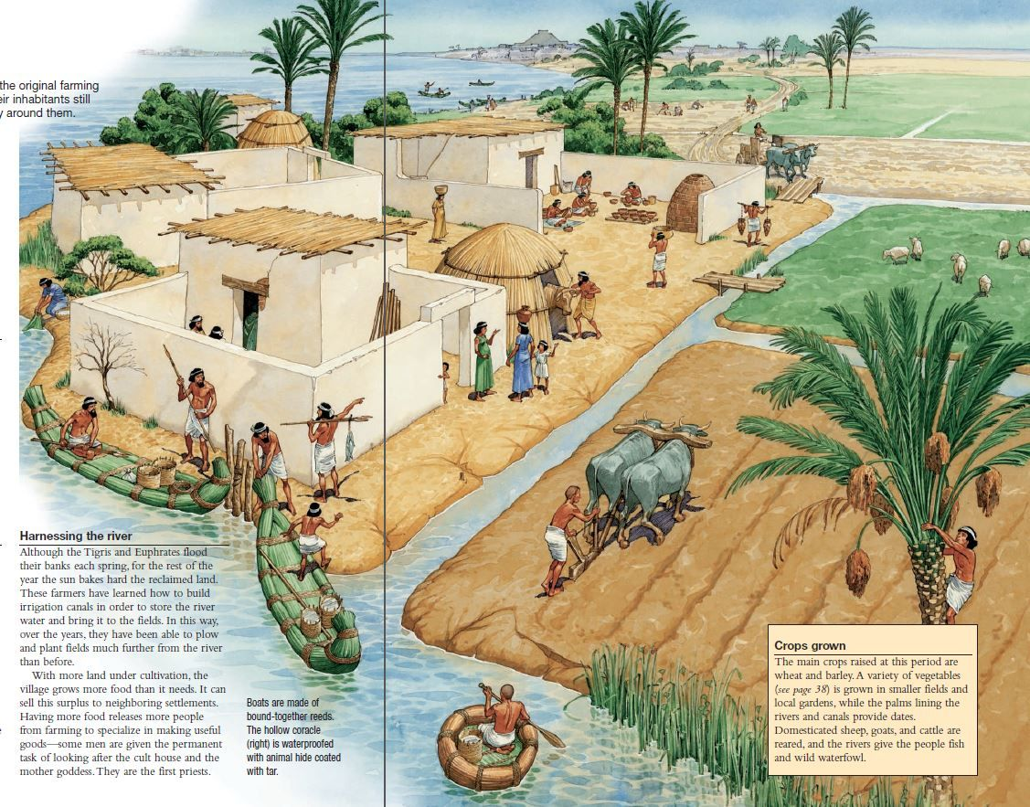 Ancient egyptian and mesopotamian cultures