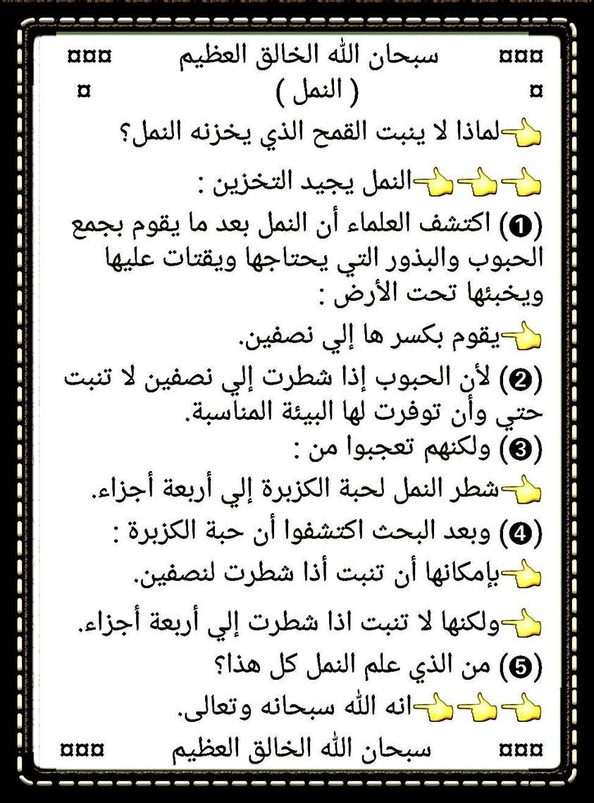 Pin By Essam Sayed Mohamed On Miracles Of Quran معجزات القران Math Math Equations Art