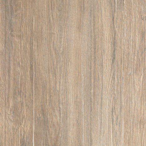 Dalle grès cérame pleine masse Siena, bois blanc, L60 x l60 cm x