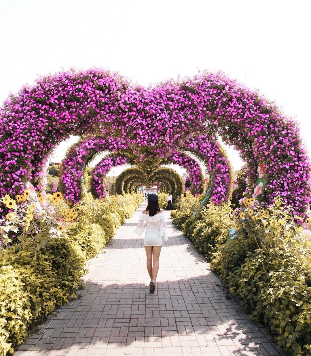Dubai Miracle Garden UAE