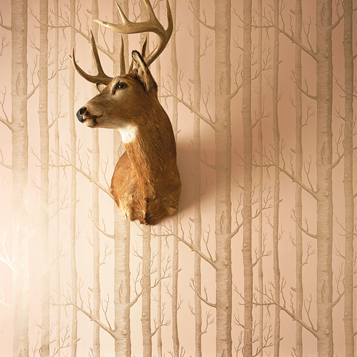Cole & Son Whimsical_Woods 103_5024 Cole & Son behang wallpaper ...