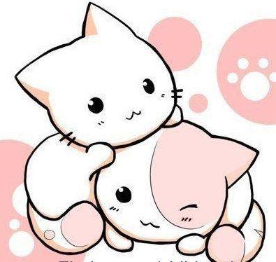 Chibi Photo Chibi Kawaii Cat Chibi Cat Kawaii Chibi