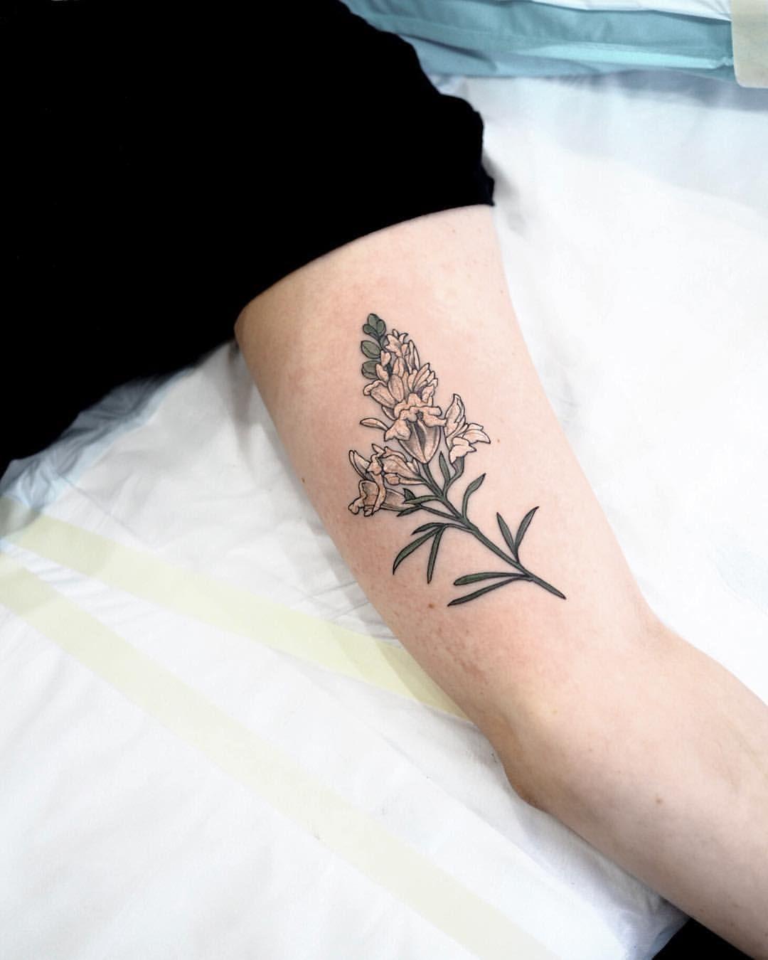 Image result for snapdragon tattoo | Tattoos, Snapdragon ...