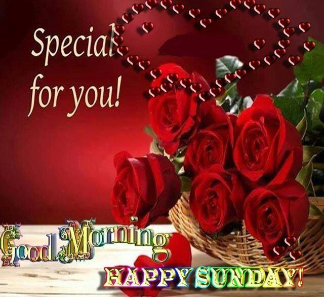 Special For You Good Morning Sunday Good Morning Sunday Sunday