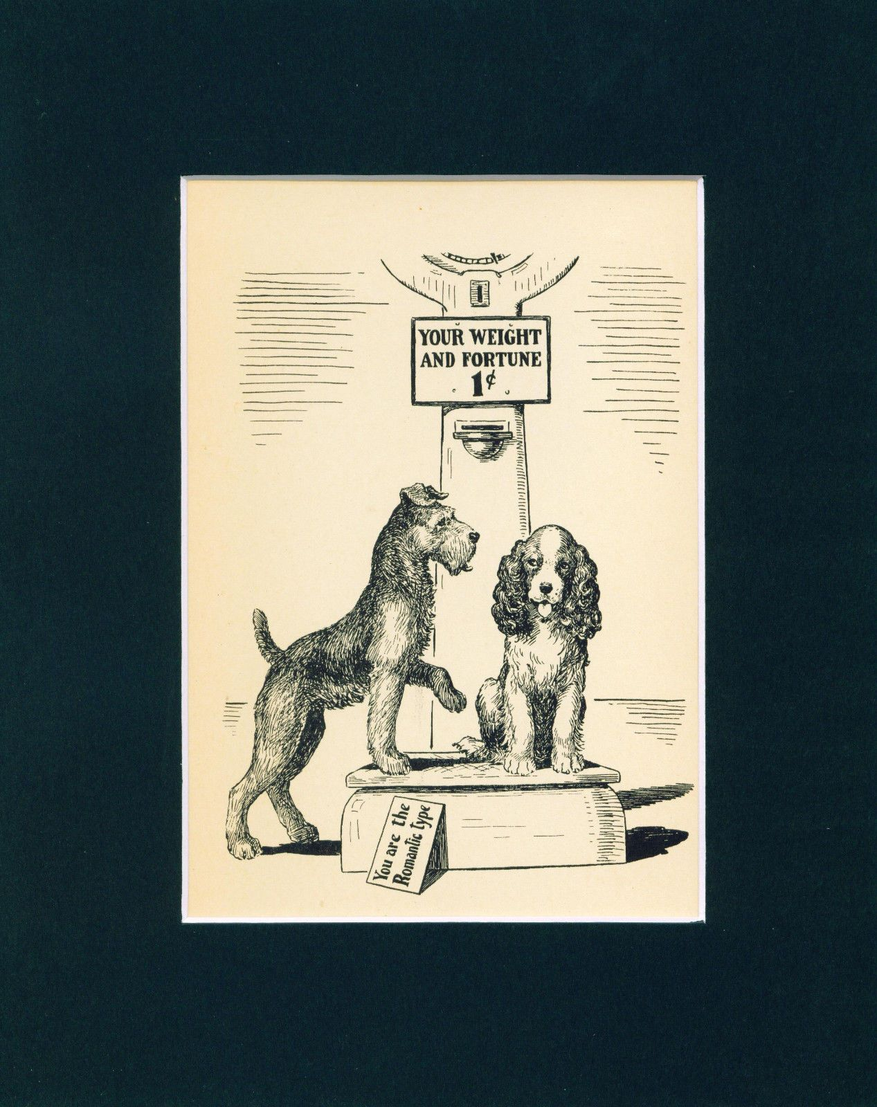 Old Dog Print 1939 Airedale Terrier English Springer Spaniel On A