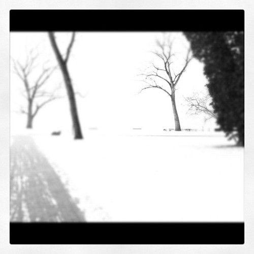 Winter 2012 Switzerland