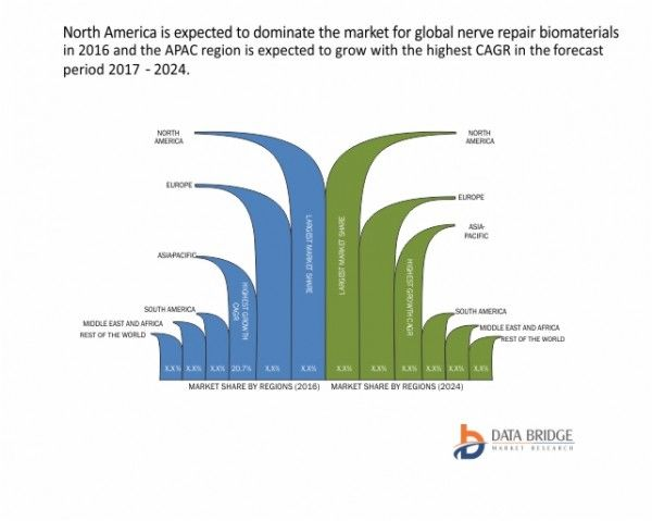 Global Nerve Repair Biomaterials Market  Industry Analysis And