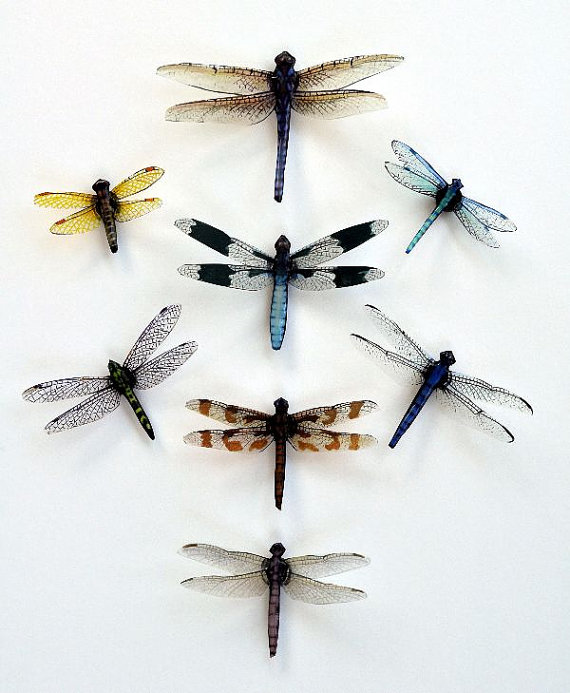 tattoo vector insect download decoration stock beautiful exotic design patterned of dragonfly illustration decor images