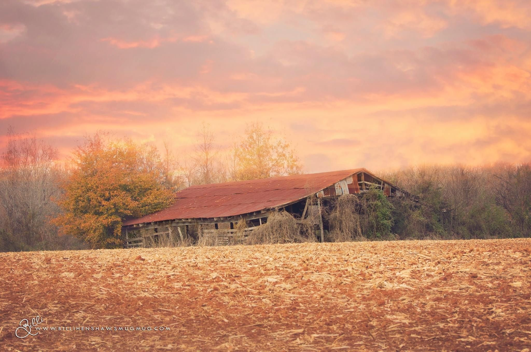 My Alabama Barn photo! One, out of many, of my favorite