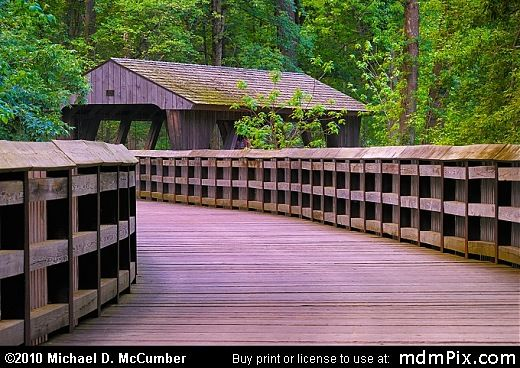 Covered Bridges In Ohio | Wildwood Covered Bridge with Fresh Spring Greenery Picture (Toledo, OH ...