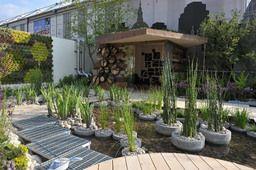 RBC Blue Water Rooftop Garden