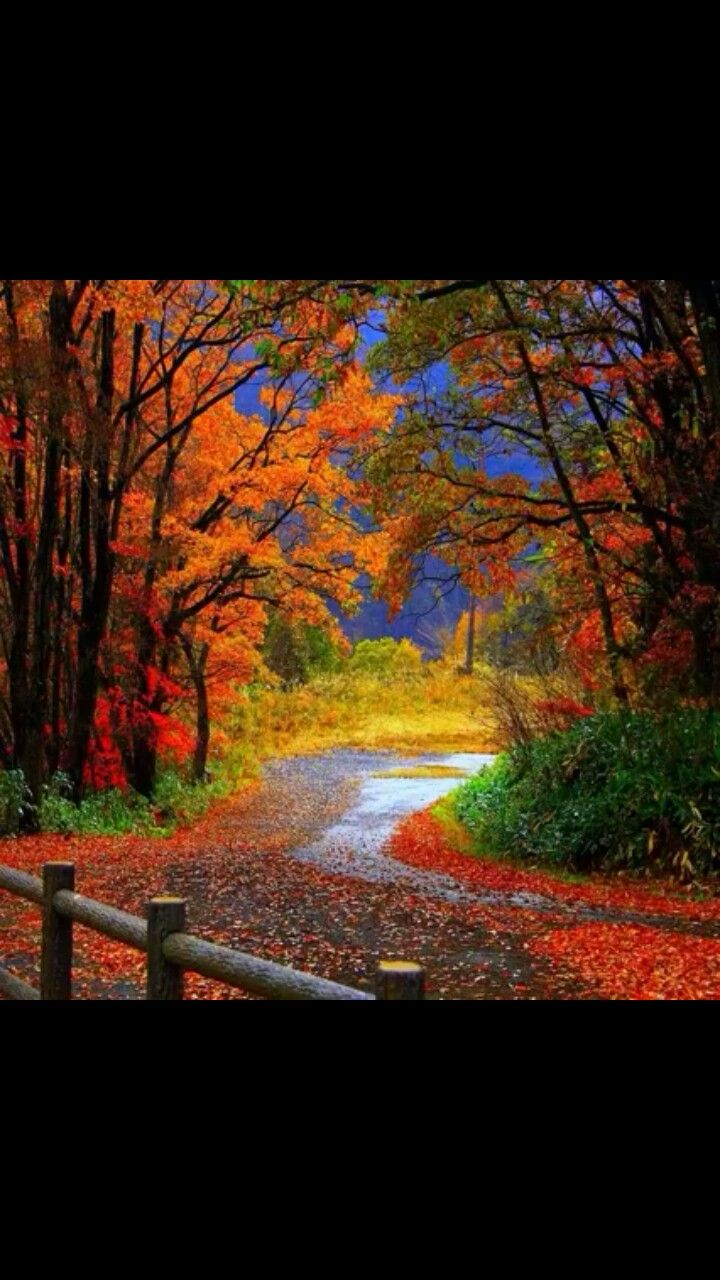 Pin by Laura Shelby on I Love Fall Landscape wallpaper