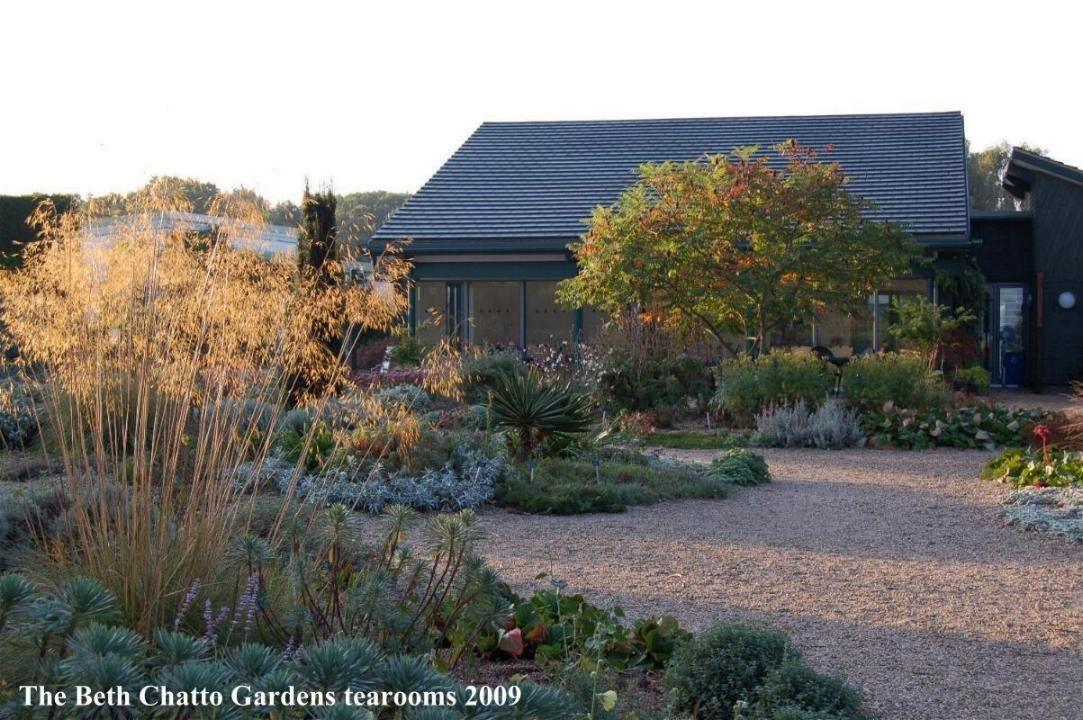 Beth chatto 39 s kiesgarten vorbild f r viele for Pflanzengestaltung garten