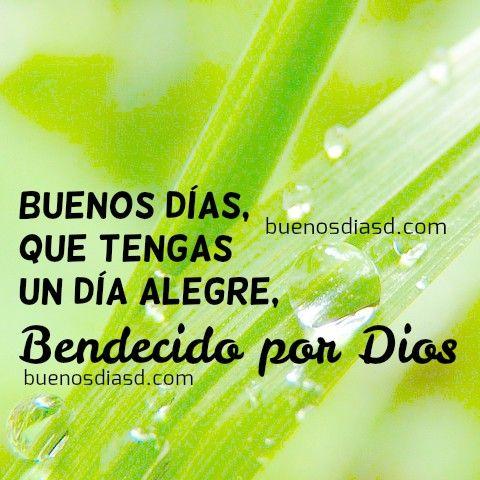 Imagenes Bonitas De Buenos Dias Con Frases Cristianas Buenos