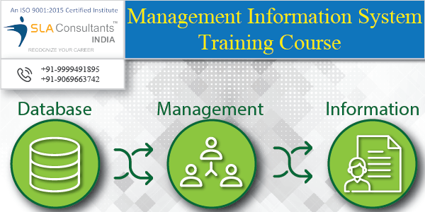 Join MIS Training Institute in Noida to Become a