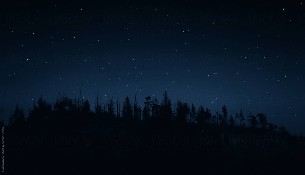 Night Sky By Cosma Andrei Night Skies Night Forest Sky Gif