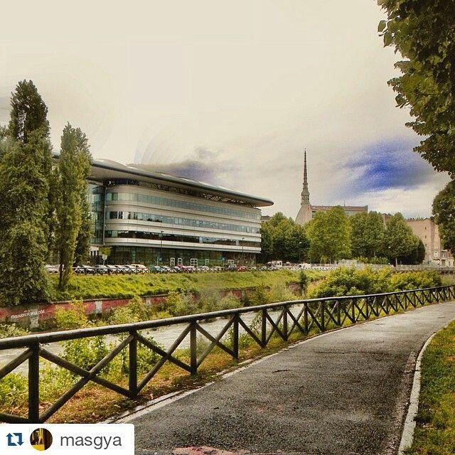 cittaditorino#Torino raccontata da masgya All'ombra della mole, sulla via della cultura ... imkacz_anyazhao 我们学校!