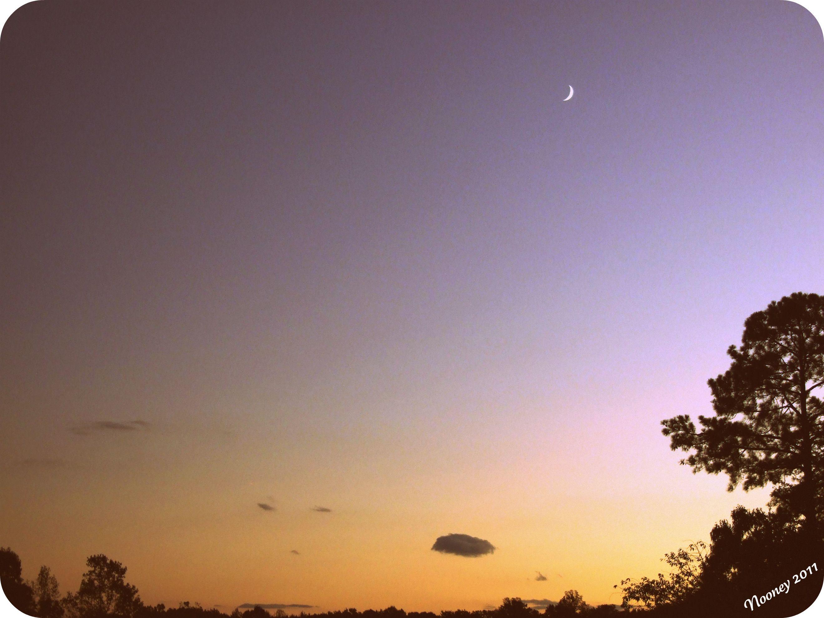Dusky Moon