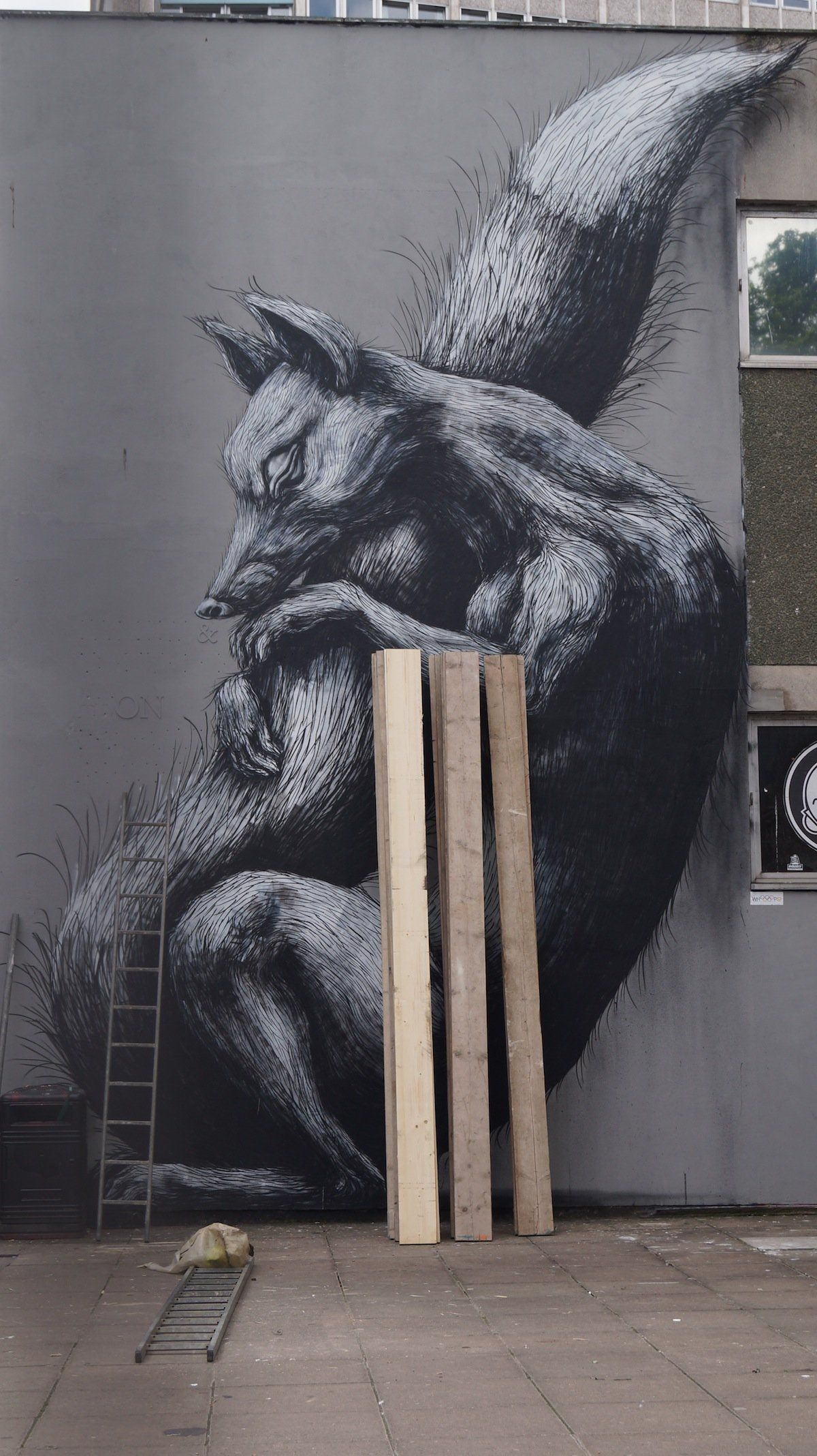 STREET ART UTOPIA » We declare the world as our canvasBy ROA in Bristol, UK » STREET ART UTOPIA