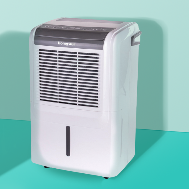 5 Best Dehumidifiers In 2020