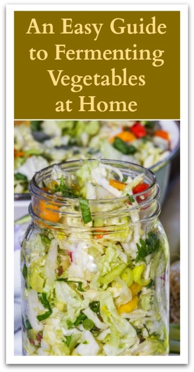 An Easy Guide to Fermenting Vegetables at Home Probiotic Foods, Fermented  Foods, Canning Recipes