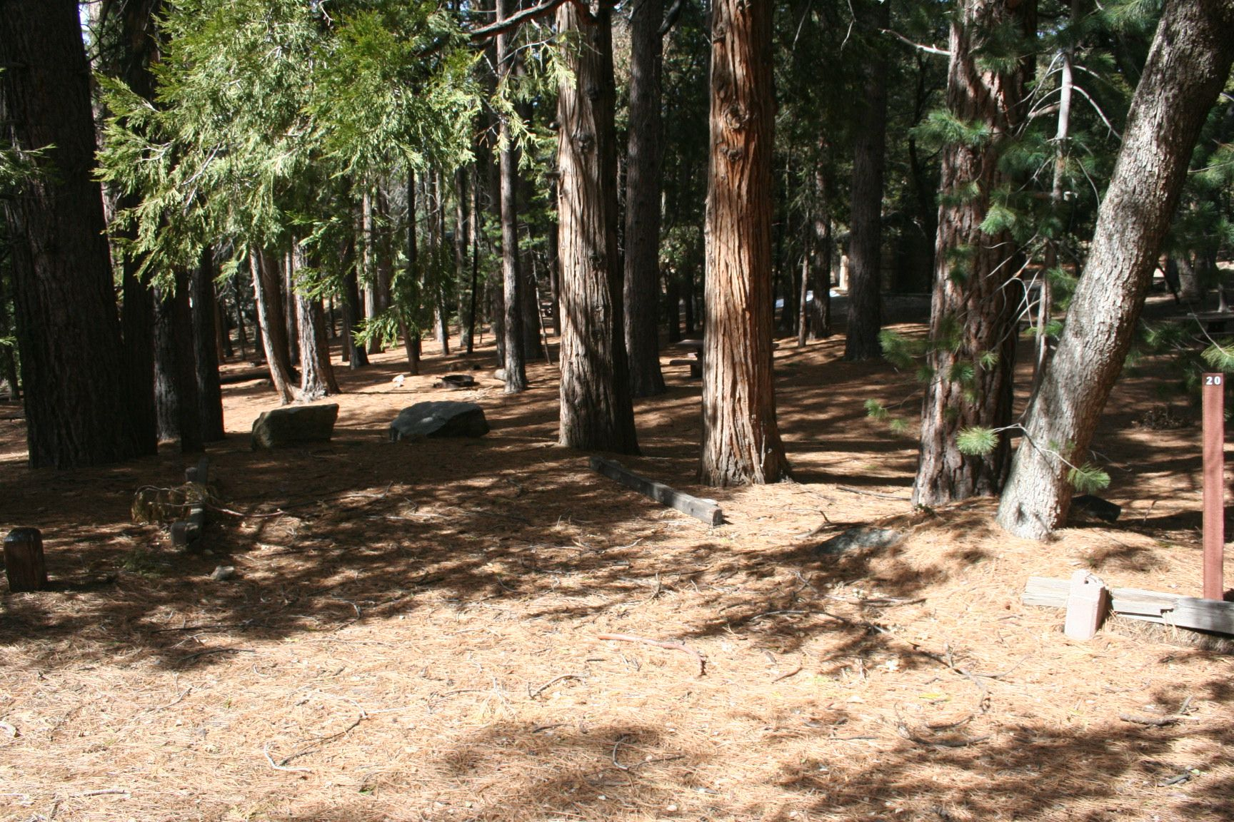 Fern Basin Campground | Southern California Campgrounds