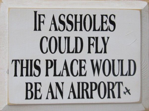 8715efe4c7df74f32dc52d029e40939d if assholes could fly this place would be an airport humor and,Funny Airport Quotes