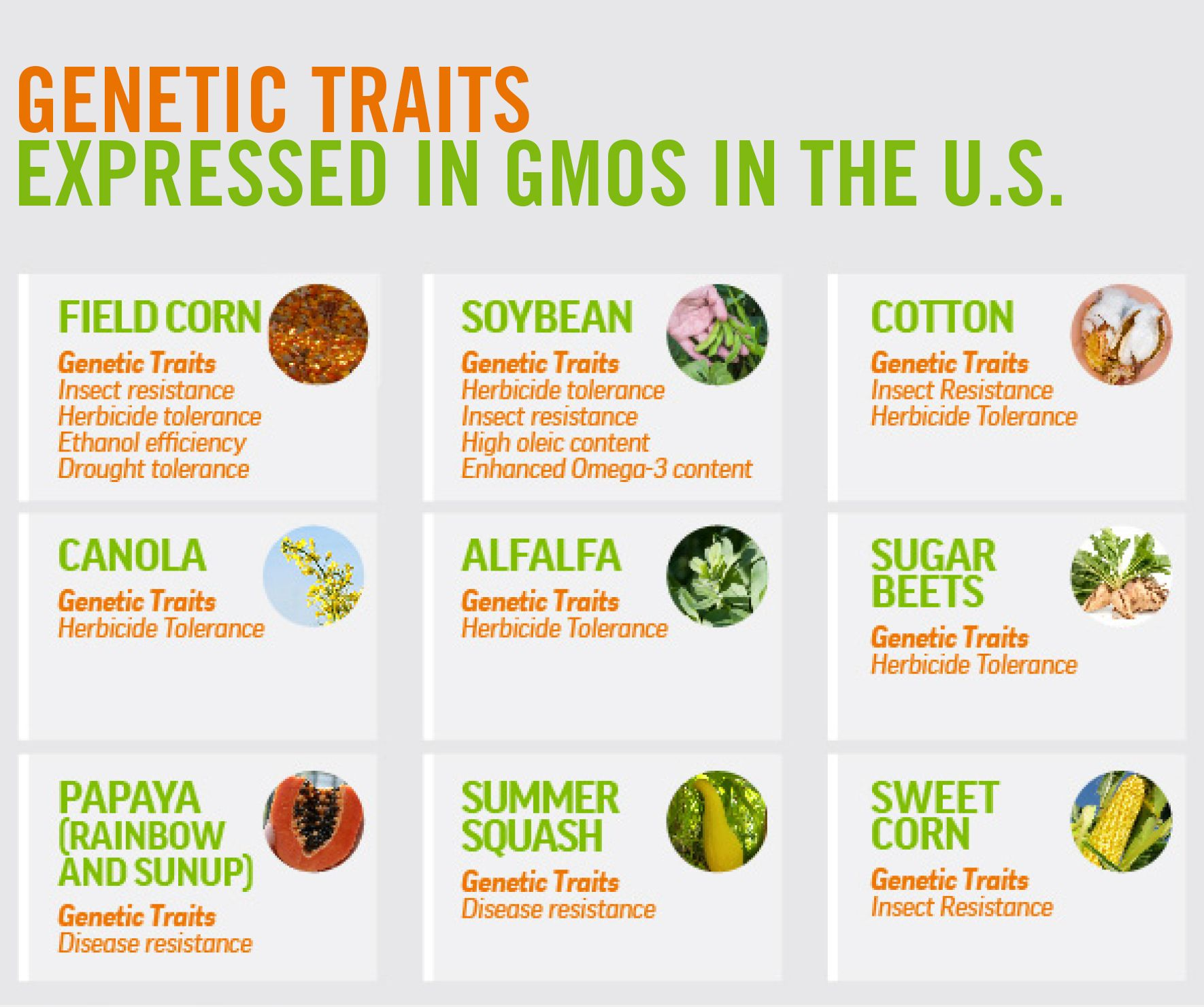 Gmo in food and agriculture