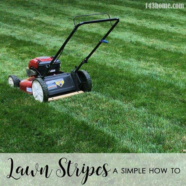 Lawn Stripes A Simple How To Lawn striping