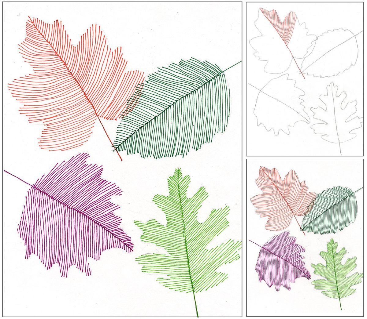 Transparent Line Art Leaves