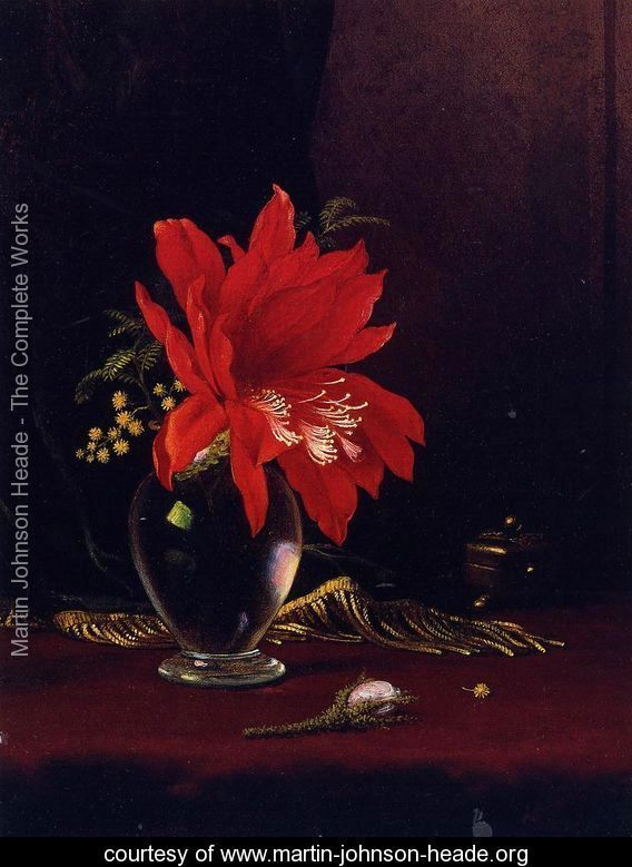 Chateau Of Flower - Martin Johnson Heade - www.martin-johnson-heade.org