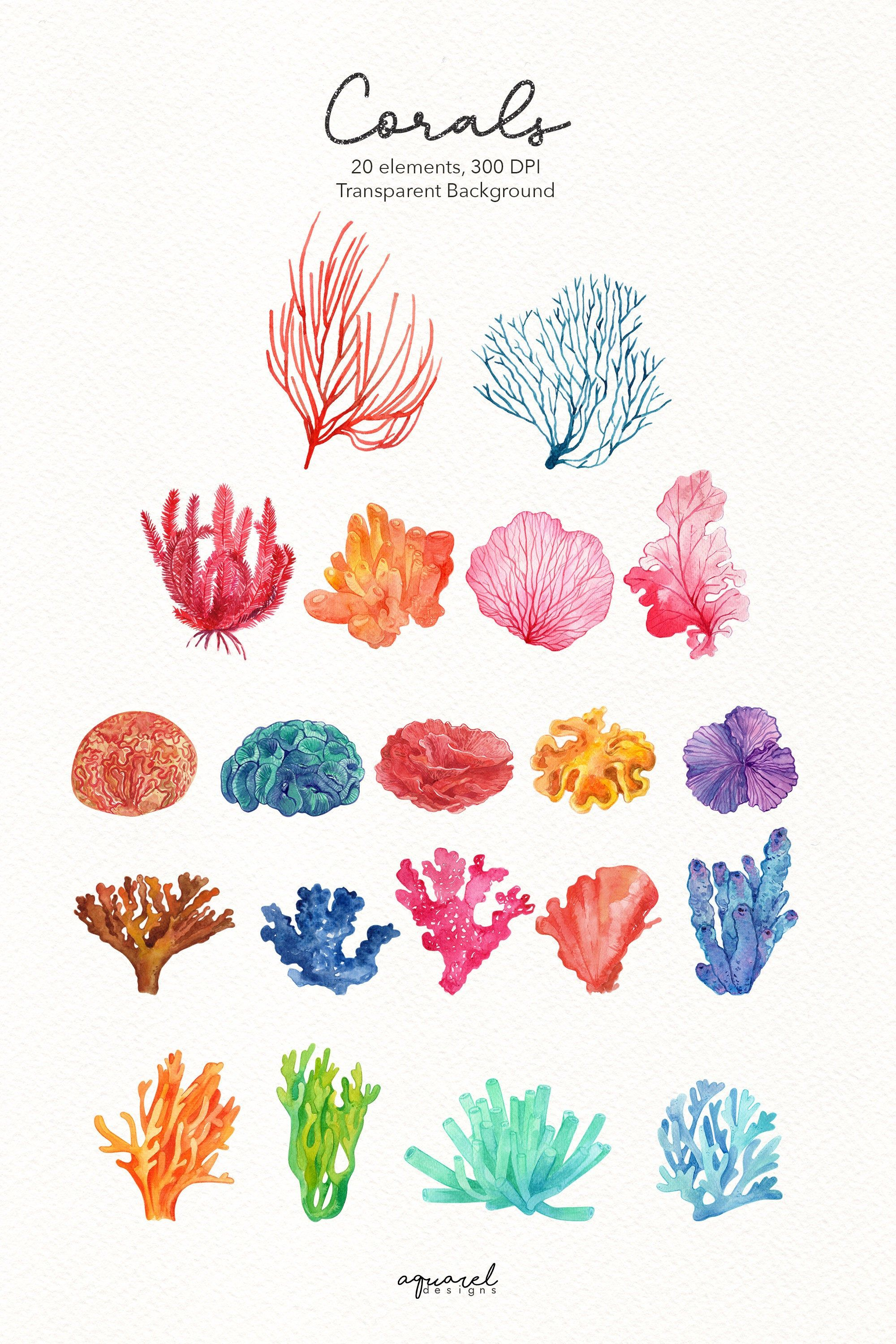 Watercolor Coral Reef Clipart Under The Sea Clipart Coral Reef