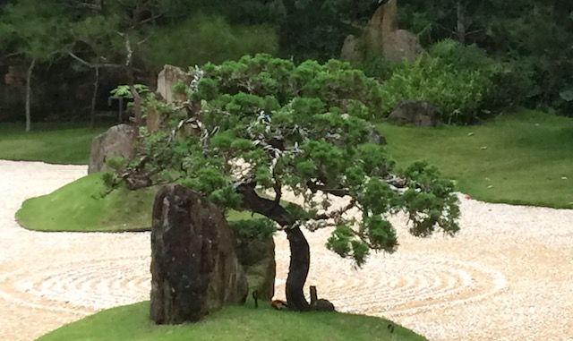 Taiji Forum - Forum for Taijiquan, Qigong &other Chinese Arts