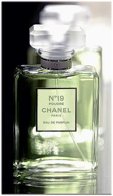 Chanel n19 Poudre. NOTES  Mandarin Orange, Grasse Neroli, Iris, Jasmin  Absolute, Galbanum, Haitian Vetiver, Hyacinth, Musk, Tonka Beans.) e5416dca7006